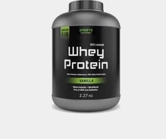Whey Protein (500MG)